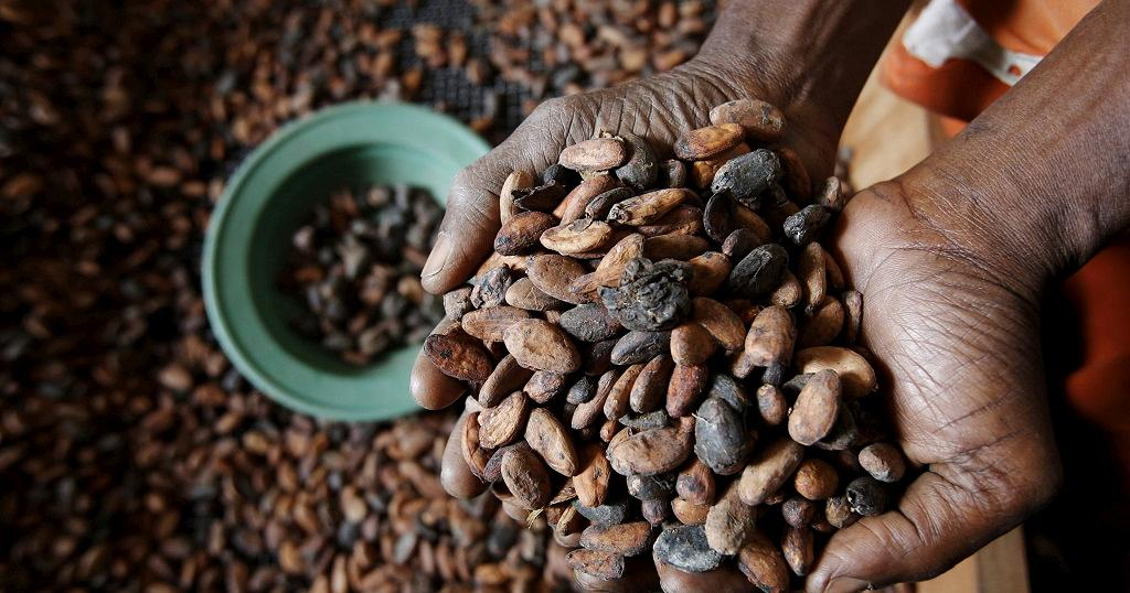 caffè costa d'avorio