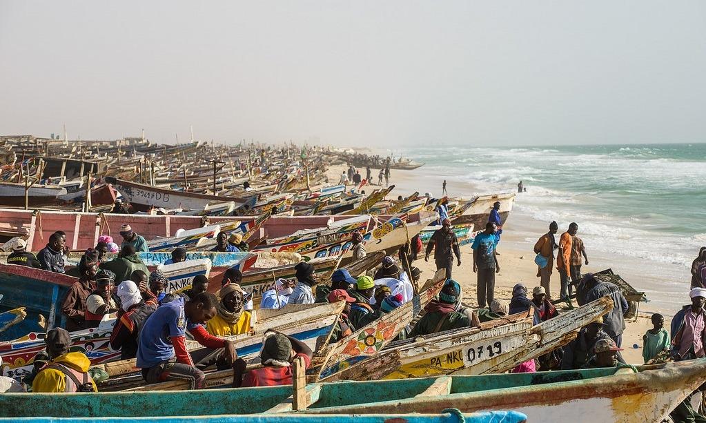 mauritania settore ittico